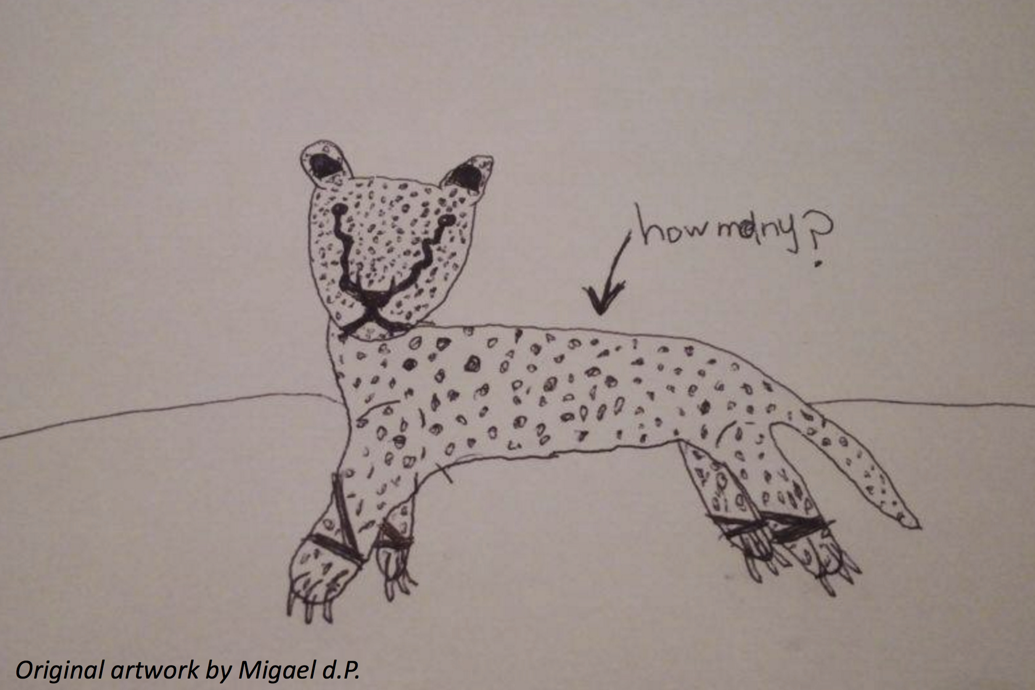 A Slinky Spotted Cat